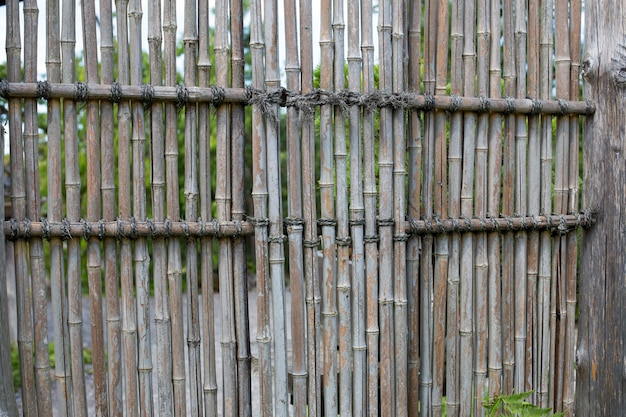 ornamental bamboo fence.htm bamboo fence in a japanese garden premium photo  bamboo fence in a japanese garden