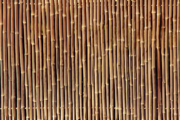 Bamboo fence texture Free Photo