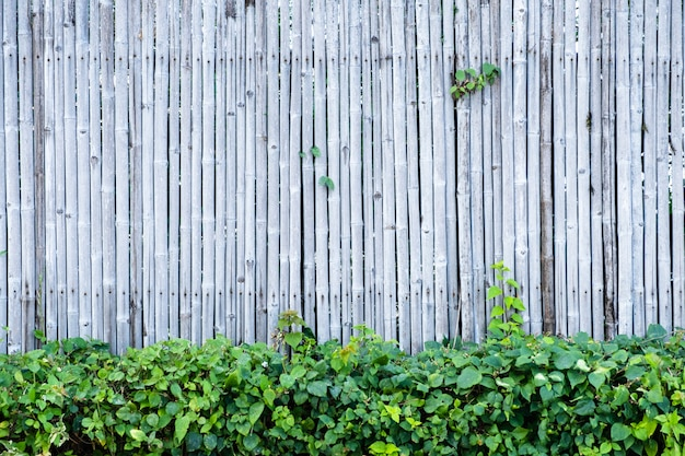 decorative bamboo fence stock photo image of ancient.htm bamboo fence wall background and texture with green plant  bamboo fence wall background and