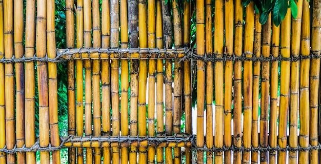 A bamboo fence Premium Photo