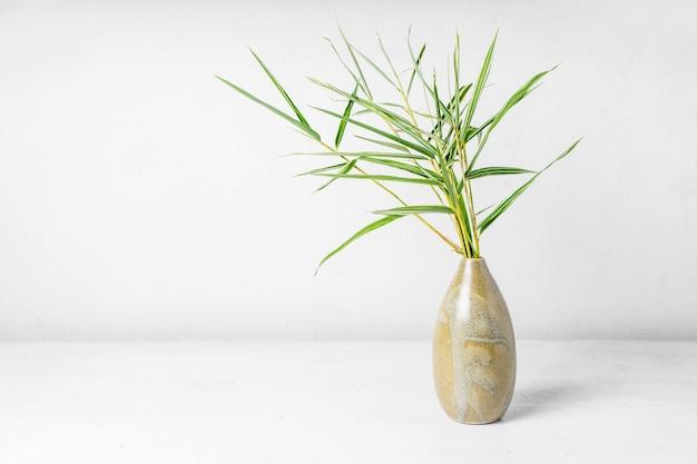 Bamboo Leaves In Vase Photo Premium Download