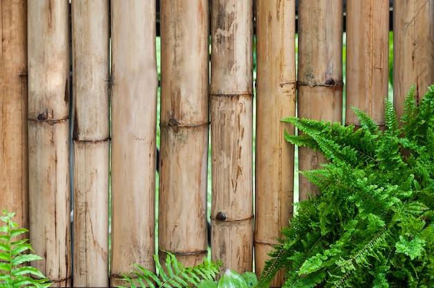 Бамбуковая стена с листьями папоротниковых растений Premium Фотографии