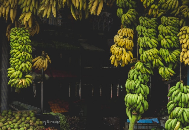 Bananas hanging from a store in India Free Photo