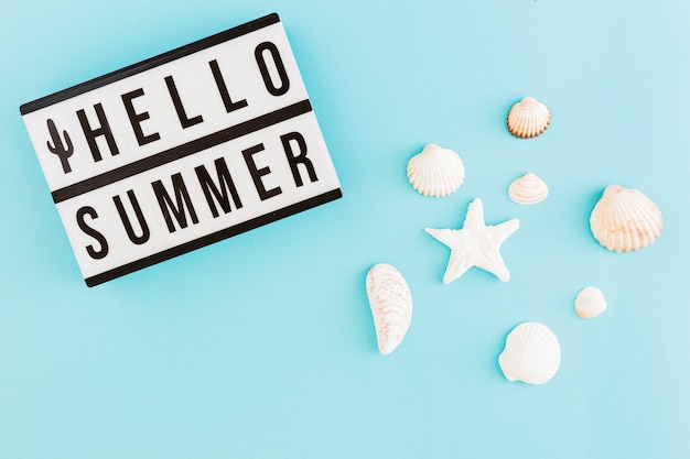 Banner with summer text and shells on light background Free Photo