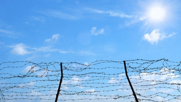Barbed wire on blue sky background, freedom, prison and hope concept. Premium Photo