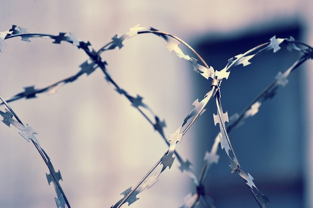 Barbed wire on blurred abstract background Premium Photo