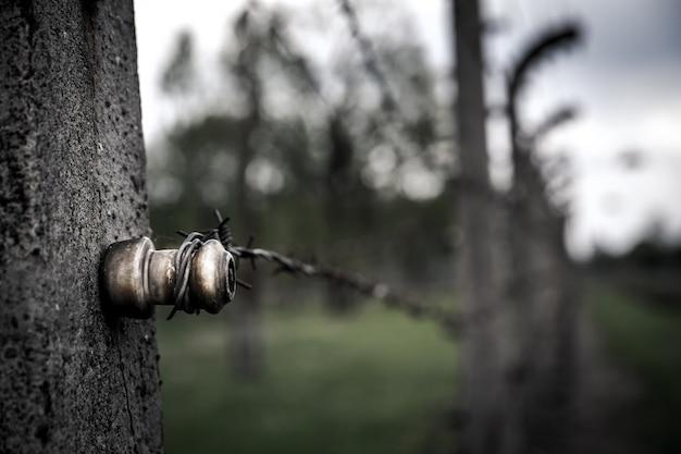 Крупным планом вид забор из колючей проволоки, освенцим ii Premium Фотографии