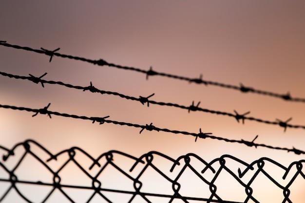 Barbed wire fence Premium Photo