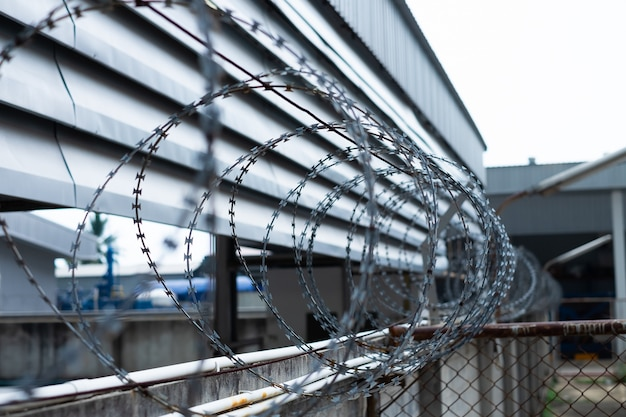 Barbed wire fences installed on the wall to protect the area from thieves or prevent prisoners escape. Premium Photo
