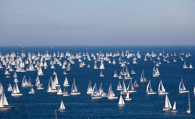 Barcolana, the trieste regatta Premium Photo