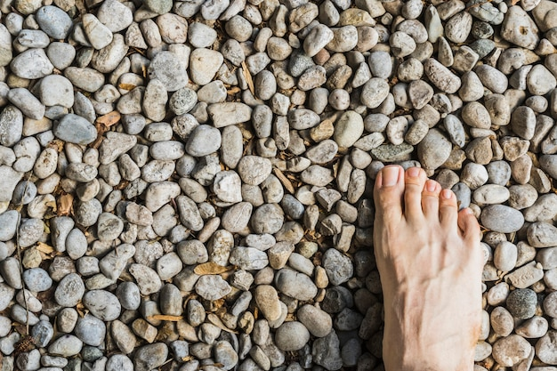 A barefoot aerial view on stone surface in the forest Premium Photo