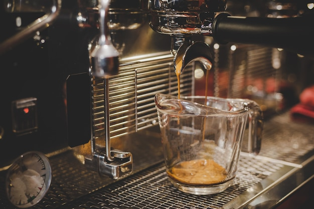 Barista using coffee machine in the cafe. Free Photo
