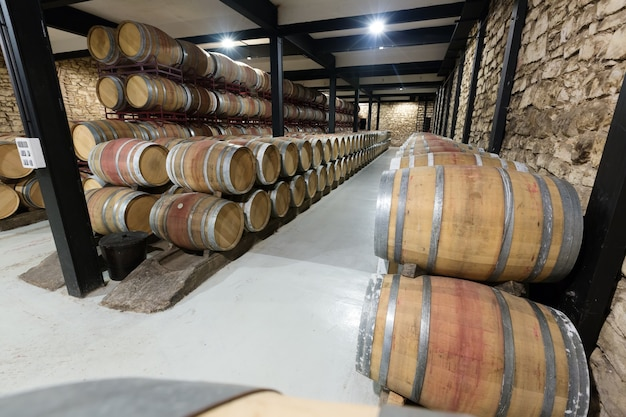Barrels in contemporary winery Free Photo