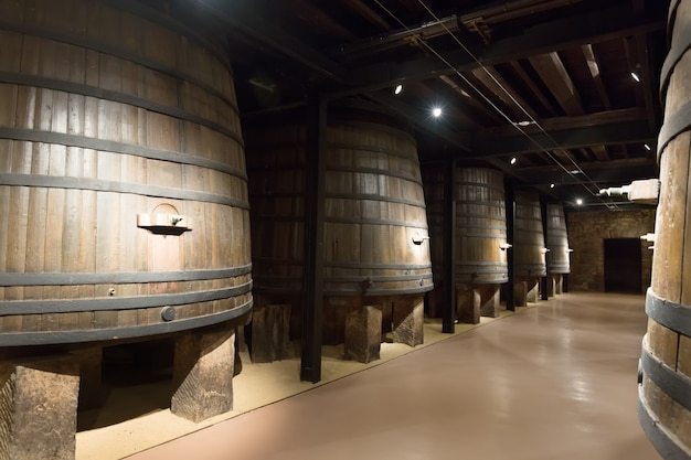 Barrels in old winery Free Photo