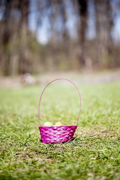 フィールドの緑の草の上のカラフルなイースターエッグのバスケット 無料写真