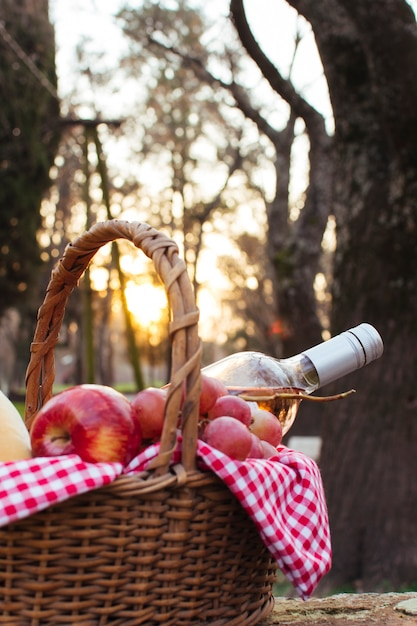 Basket with picnic goodies at dawn Free Photo