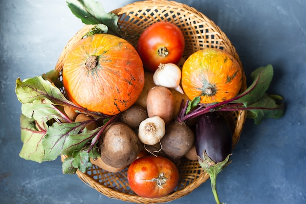 Basket with radishes tomatoes and pumpkins Free Photo