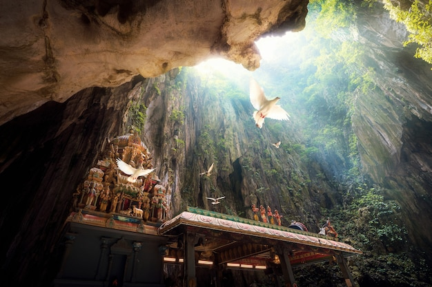 Batu cave temple Premium Photo