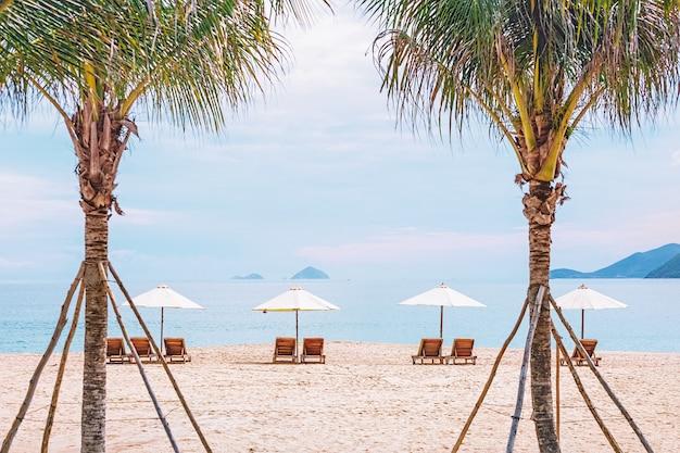 Шезлонги на песчаном пляже в обрамлении пальм. фото с размытием в движении и мягким фокусом. вьетнам, нячанг. Premium Фотографии