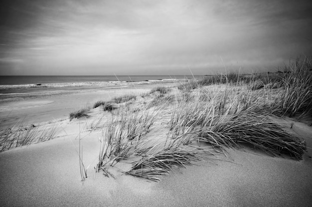 2019 year for lady- Landscape Beach photography black and white