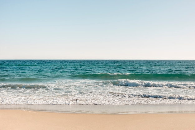 Beach and ocean in summertime Free Photo