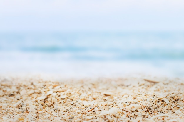 Beach product background Free Photo