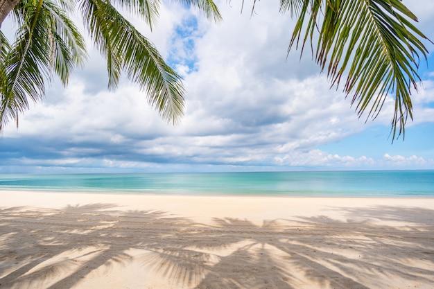Пляж, морской песок и пальмы в летний день Premium Фотографии