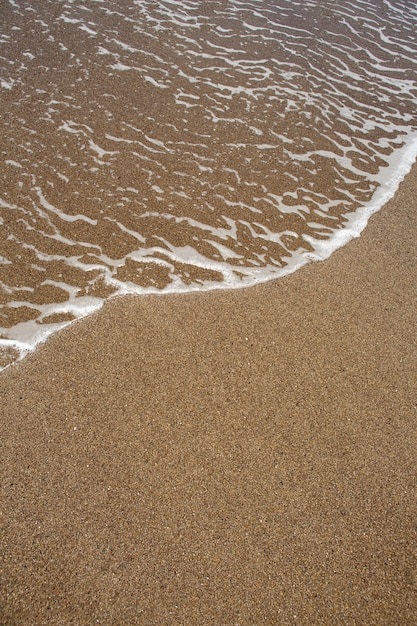 Beach tropical with brown sand and clear water Premium Photo