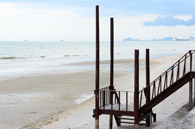 Beach and wood at sea Premium Photo