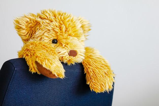 Bear doll clamp on working chair Premium Photo