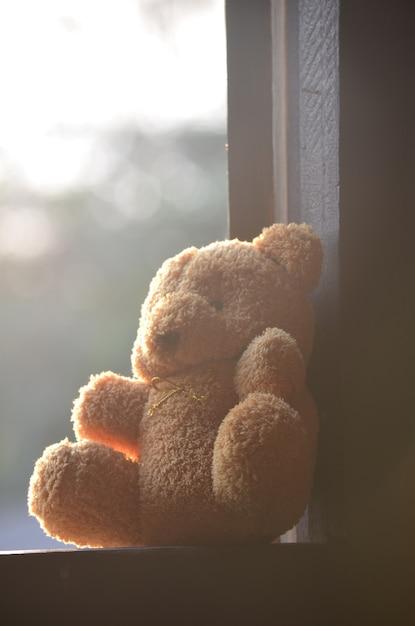 Bear doll put on the windows Premium Photo
