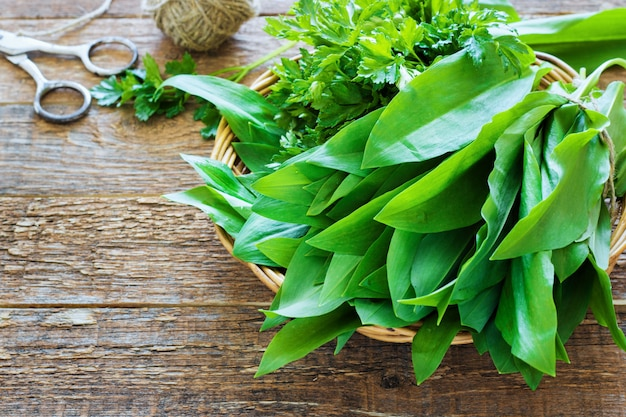 Bear garlic bunch and parsley tied with rope Premium Photo