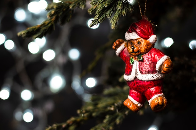 Bear in santa clothes ornament in tree Free Photo