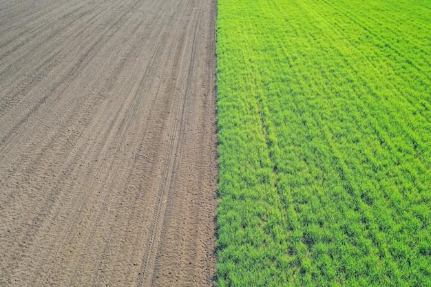 Bella ripresa aerea di un campo agricolo verde Foto Gratuite