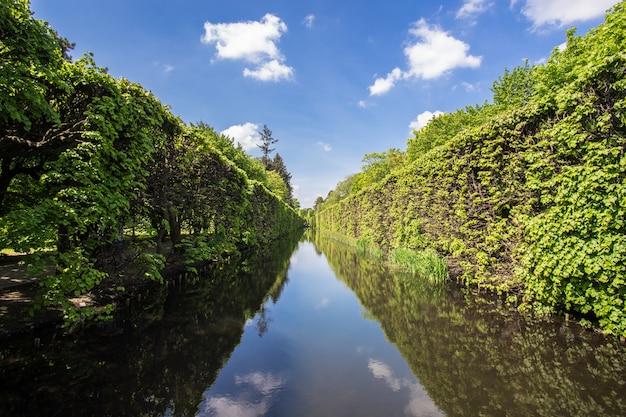 Красивая аллея с рекой с отражениями деревьев в гданьске, польша Бесплатные Фотографии