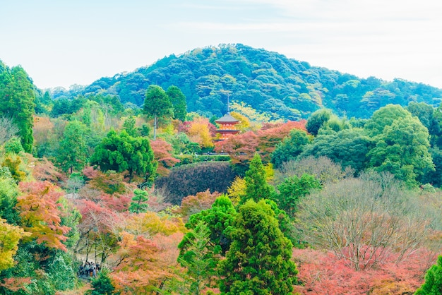 Beautiful architecture in kiyomizu temple at kyoto japan Free Photo