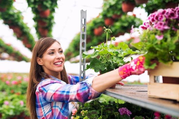 温室の庭で花の世話をする美しい魅力的な女性の花屋 無料写真