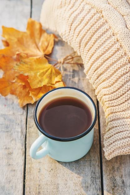 Beautiful autumn background. Premium Photo