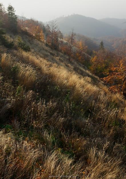 ザグレブ、クロアチアの山medvednicaの美しい秋 無料写真