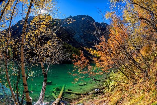 山の湖の澄んだ緑の水と美しい秋の風景 Premium写真