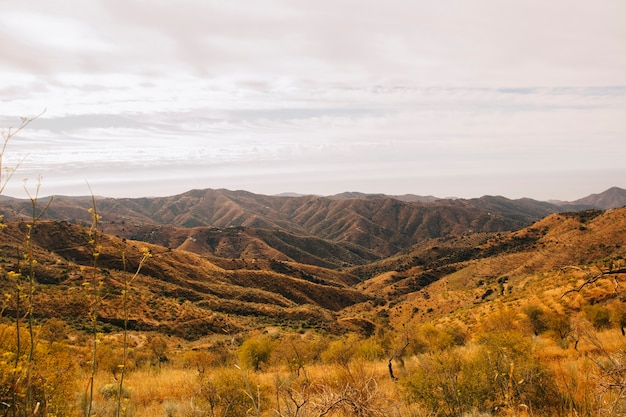 Beautiful autumn landscape Free Photo
