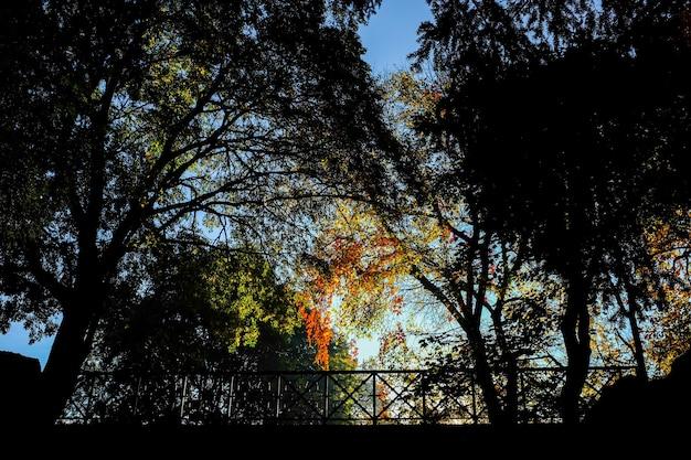 밀라노, 이탈리아의 Giardini Pubblici Indro Montanelli 공원에서 아름다운 가을 풍경 무료 사진