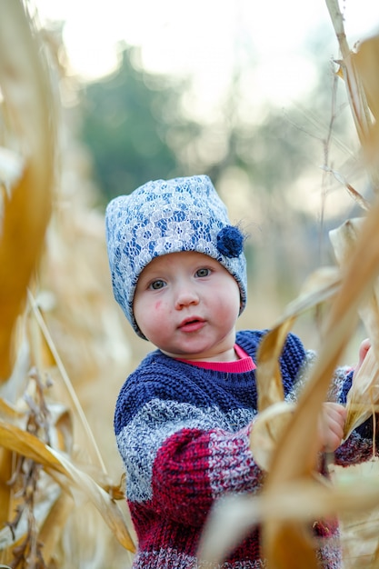 Beautiful baby in warm stylish sweater standing in middle of corn field. harvest time. organic agriculture for children. Premium Photo