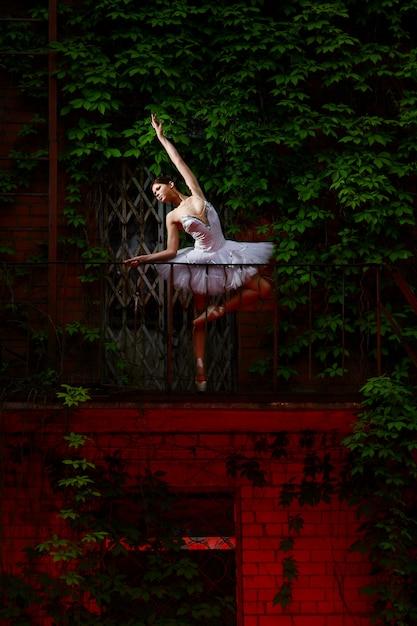 Beautiful Ballerina Dancing Ballet Dance Free Photo