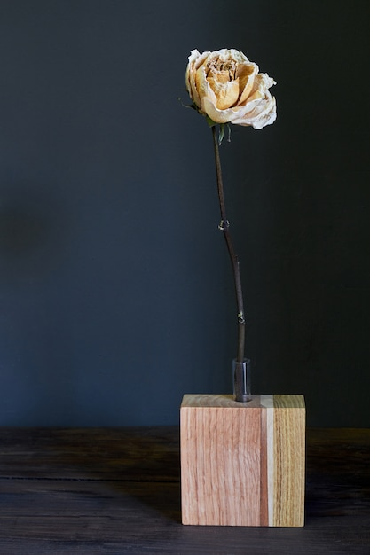 Beautiful beige dry rose in a wooden vase on a dark background, selective focus Premium Photo