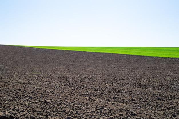 ウクライナの美しい黒い地球フィールド。農業の田園風景、カラフルな丘。耕された暗い土地と緑のフィールド。世界の美しさを探ります。 無料写真