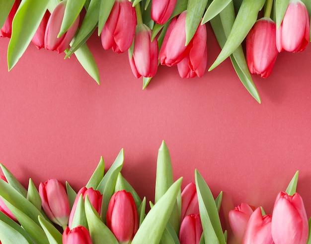 ピンクの背景のチューリップの美しい花束 無料写真