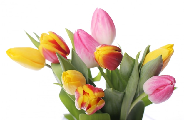 Beautiful bouquet of tulips, colorful tulips, nature background Free Photo