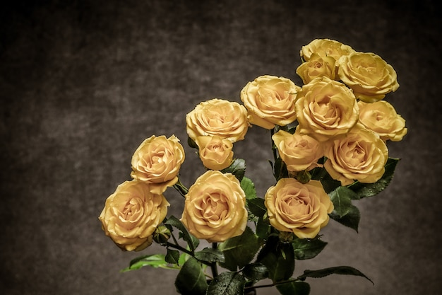 Beautiful bouquet of yellow roses on a grey background Free Photo