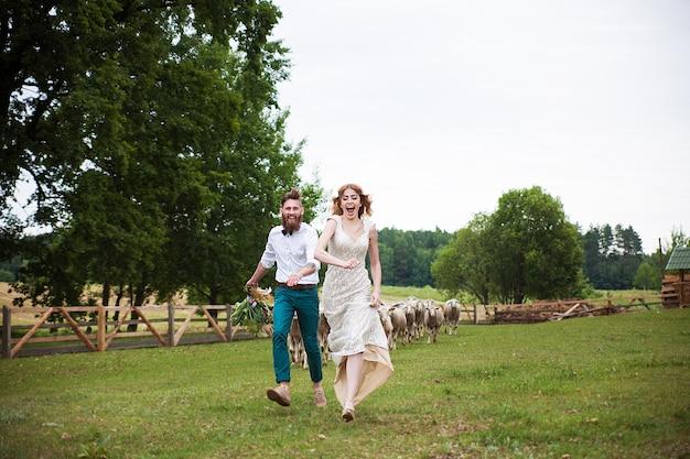 ペンで羊の群れから逃げる美しい新郎新婦のヒップスター Premium写真